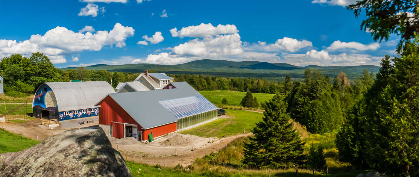 New client: Branding project for Jasper Hill Farm in Vermont, USA